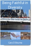 Being Faithful in Diversity - Book Cover