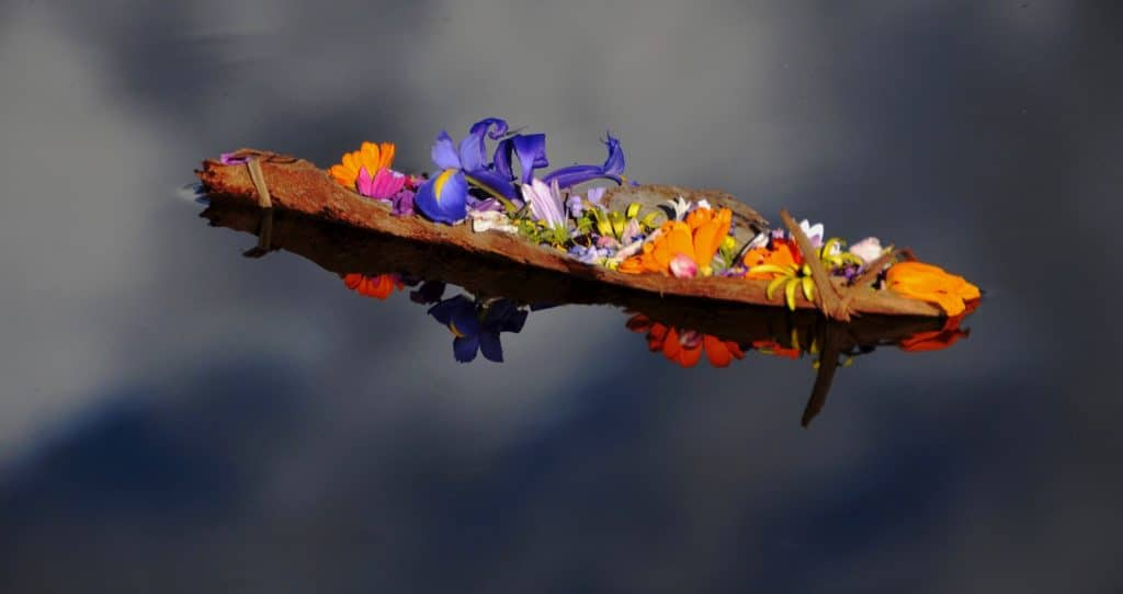 the boat of flowers ...