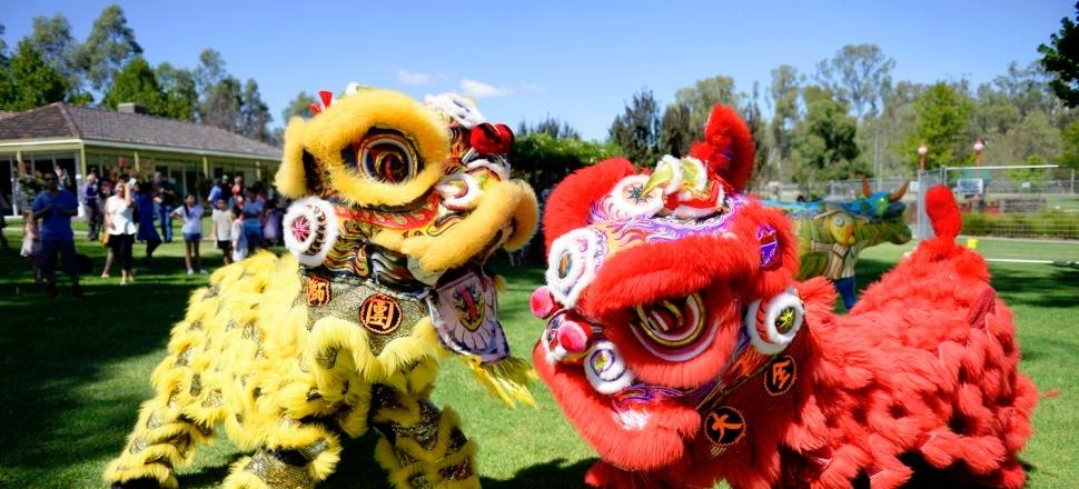 Chinese Dragons at Shepparton