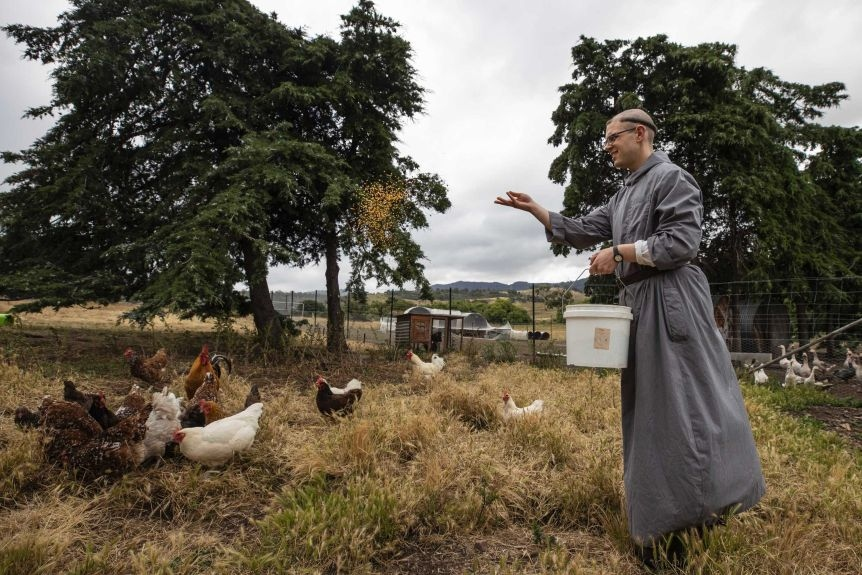 Benedictine monk, brother Bede feeding chickens