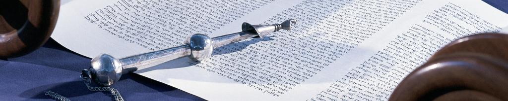 Torah: Where is Humanity