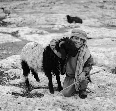 Jewish Shepherd boy